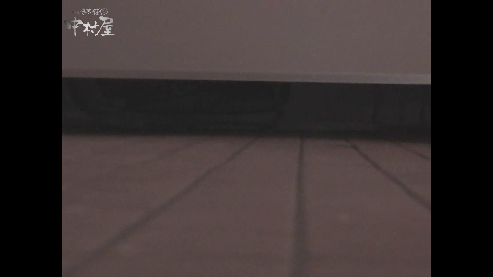 女子トイレ盗撮若い嬢編vol.10 潜入  96pic 9