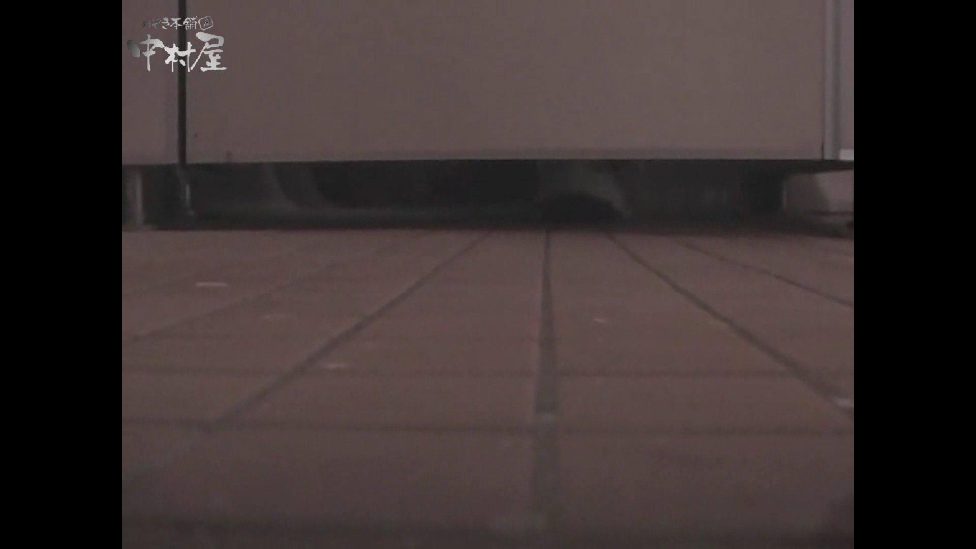 女子トイレ盗撮若い嬢編vol.10 潜入  96pic 12