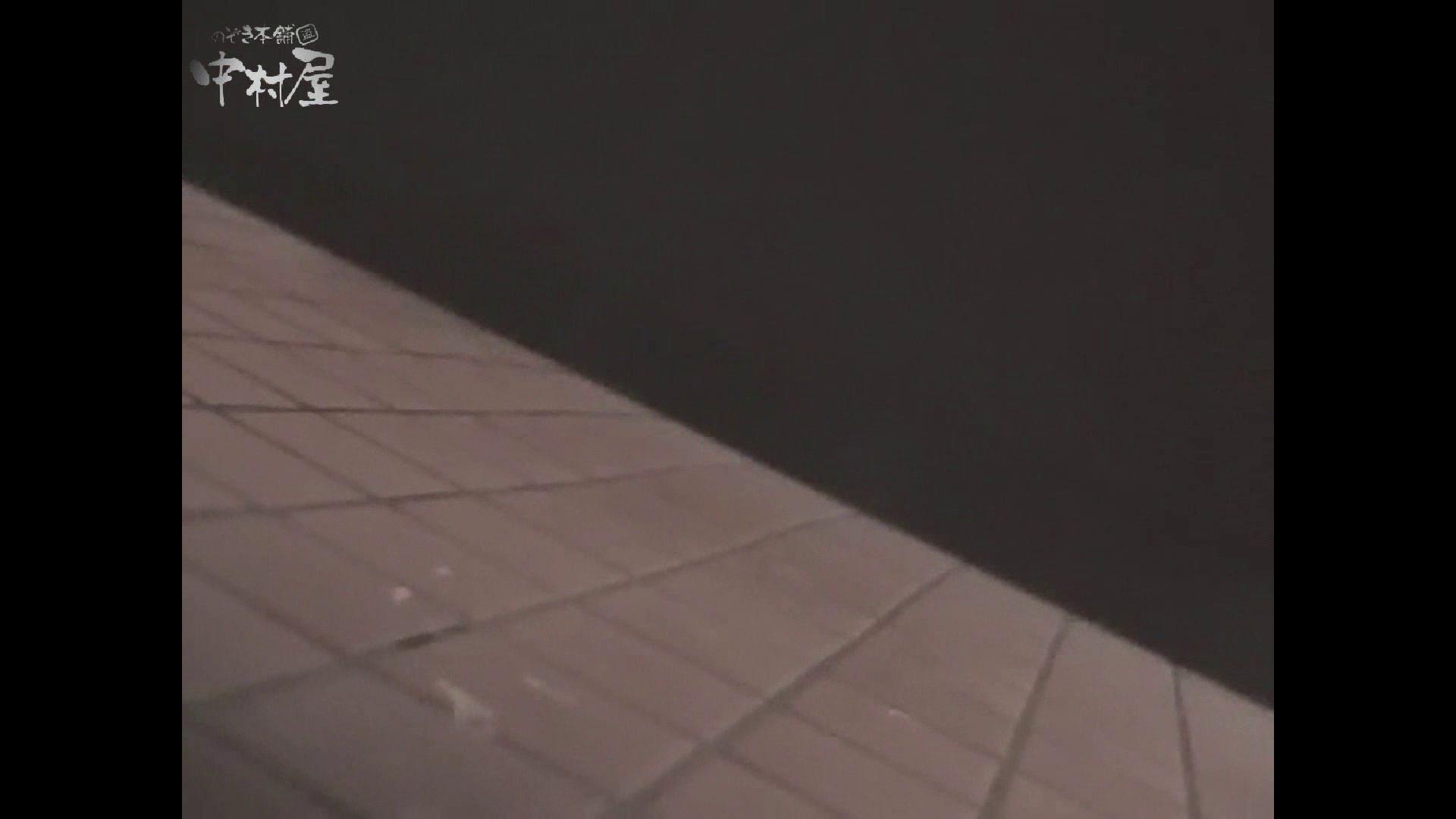 女子トイレ盗撮若い嬢編vol.10 潜入  96pic 71