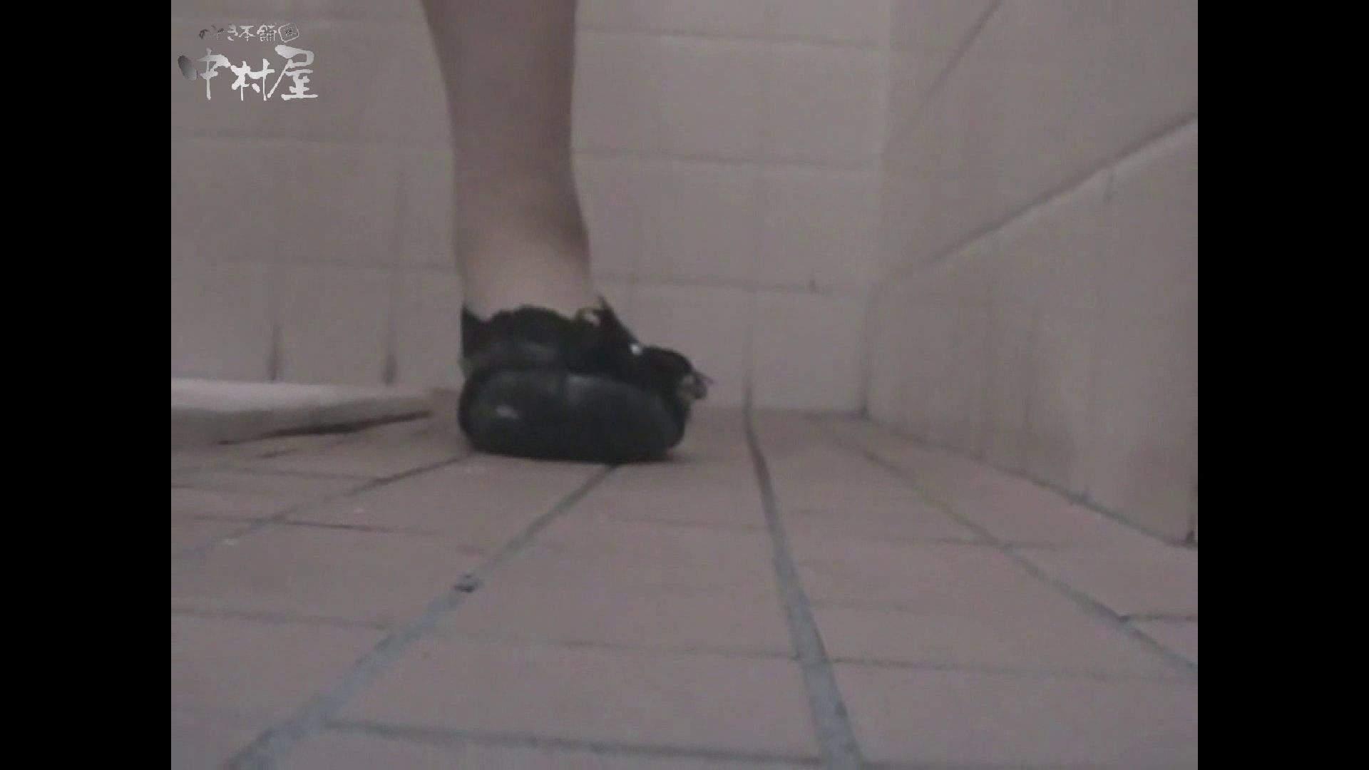 女子トイレ盗撮若い嬢編vol.10 潜入  96pic 73